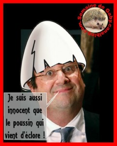 hollande-calimero-242x300 dans humour